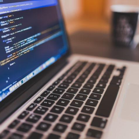 Programmer – Entry Level
